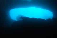 Diving Menorca July 2018 043